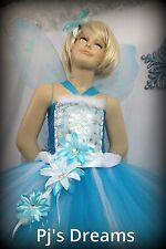 Periwinkle Fairy tutu dress and wing costume set Halloween dress up photos dance