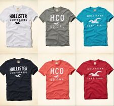 NWT Hollister by Abercrombie Men Dixon Lake T-Shirt Short Sleeve Graphic Tee