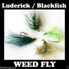 4x WEED FLIES FOR LUDERICK or BLACK FISH – these are great a fly