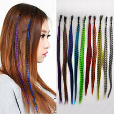 10pc Women Fashion Straight Grizzly Synthetic Feather Hair Piece Hair Extensions