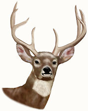 "Deer Buck Large Decal Sticker 8"" x 10"" No Fade Vinyl Hunting Hunters Trucks"