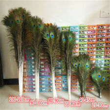 Wholesale 50-100pcs beautiful peacock tail feathers eyes 10-44 inches/25-110 cm