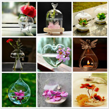 Hanging Glass Hydroponic Flowers Vase Garden DIY Terrarium Container Holder