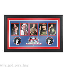 Rare Wwe john cena evaluation of a superstar commemorative plaque official wwe