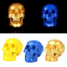 Home Party Decor Human Skull Resin Replica Medical Model Halloween Decor