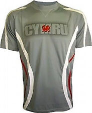 MENS WELSH WALES GREY RUGBY FOOTBALL GYM RUNNING COOL-DRY T-SHIRT TOP S-XXXL