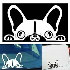 Guardian Dog Peeper Car Vinyl Auto Windshield Mirror Window Decal Sticker Decor