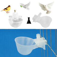 5/10Pcs Poultry Bird Chicken Water Drinker Cup Plastic Bowl Automatic Drinking