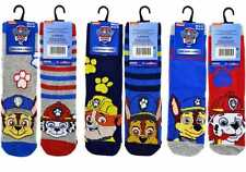 6 Pairs Official Paw Patrol Boys Kids Socks Size 3-5.5/6-8.5/9-12