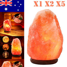 1x 2x 5x Himalayan Salt Lamps Natural Crystal Rock Shape Night Lights 1-7 kg