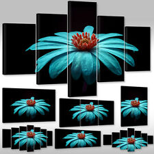 Canvas picture Wall Tattoo Art Print Stretcher frame Plant Flowers blue Gerbera
