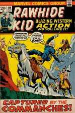 Rawhide Kid (1955 series) #114 in Fine + condition. FREE bag/board