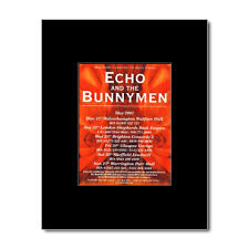 ECHO AND THE BUNNYMEN - UK Tour 2001 Mini Poster