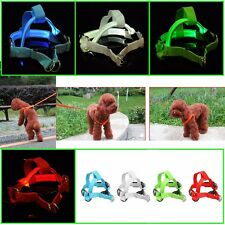 Peppy Dog LED Glow Flashing Light-up Belt Harness Leash Tether Pet Safety Collar