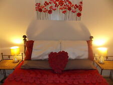 ROMANTIC BREAK SEPTEMBER  HOLIDAY COTTAGE let  North Wales Snowdonia