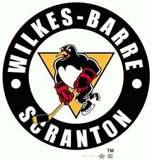 AHL Wilkes-Barre Scranton Penguins Embroidered Hoodie XS-4XL Pittsburgh New