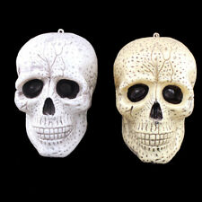 9/16cm Plastic Human Skull Head Halloween Party Horror Decoration Prop Cheap