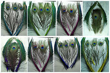 Wholesale 10-500PCS 25-30cm/10-12inches  Peacock Feathers & Peacock Wing Feather