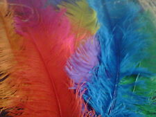"5 20-30"" LONG BURLESQUE OSTRICH FEATHERS MANY COLOURS"