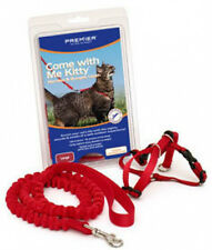 Premier Come With Me Kitty Cat Harness & Bungee Lead Leash Set S M L  6 Colors!