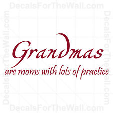 Grandmas are Mom with Lots of Practice Family Wall Decal Vinyl Sticker Decor F57