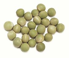 GREEN PEA SPROUTING SEEDS (1 to 10 Lbs) to Grow Sprouts or for Cooking