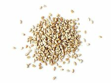 Certified Organic WHEAT BERRIES (WHEAT GRASS) Seeds for Sprouting (1 to 15 Lbs)