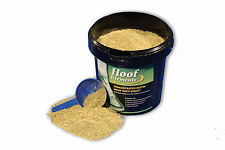 Core Hoof Elements 675g- concentrated Biotin Hoof supplement with MSM for horses