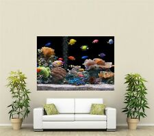 Fish Tank Aquarium Giant 1 Piece  Wall Art Poster AN105