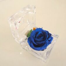 Handmade Preserved Flowers, Real Flower, Ring Box, Lasts Forever,Gift, Wholesale