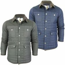 Mens 'Collins' Box Quilted Padded Jacket/ Coat Cord Collar By Bravel Soul