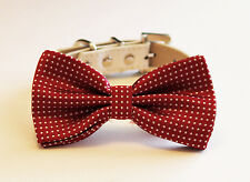 Red Dog bow tie Collar, Bow attached to Leather collar, Polka dots red, Puppy