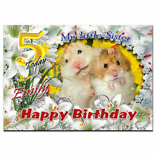 071 Hamsters daughter sister brother cousin friend son 9th 10th 11th 12th 13th