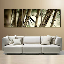 BAMBOO ready to hang picture improved canvas wall art mounted on 3 pc fiberboard