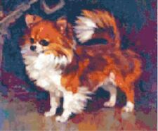 Long-hair Chihuahua ~ Counted Cross Stitch Chart ~ Dogs