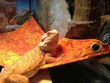 SALE on ALL HAMMOCK Patterns! Lg or Sm for Reptiles