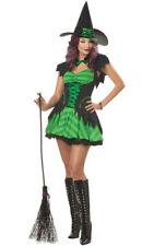 ADULT WOMENS SEXY WITCH HOCUS POCUS GREEN FANCY DRESS HALLOWEEN LADIES COSTUME