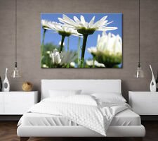 Large Canvas Wall Art Green Blue White Flower Stunning New Print Sizes A0 A1 A2