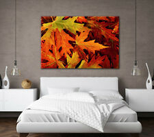 LARGE CANVAS WALL ART PRINT BEAUTIFUL ORANGE & GREEN AUTUMN LEAVES PICTURE NEW