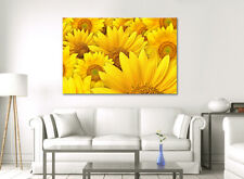 LARGE FRAMED CANVAS WALL ART YELLOW SUN FLOWER CALMING PICTURE STUNNING PRINT