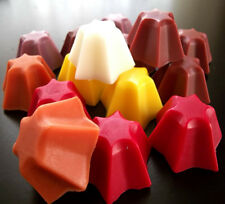 Food Scented Spices Wax Melts Starburst Candle Tarts Melts Cinnamon Autumn Home