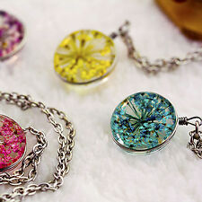 Pretty1X Natural Air Dried Flowers 2 Sides Glass Ball Dome Pendant Necklace 50cm