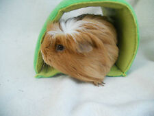 Guinea pig tunnel, The Trunnel