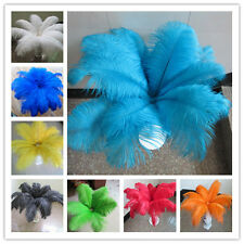 10-100 pcs ostrich feathers (10-16 inch /25-40 cm) a variety of colors to choose