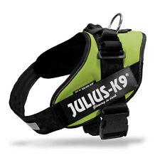 Julius K9 IDC Powerharness Dog Harness kiwi NEW