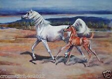 ARABIAN HORSE MARE AND FOAL ARAB  COUNTED CROSS STITCH PATTERN