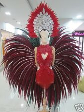Da NeeNa C120  Red Devil Lady Feather Crystal Samba Headdress  Costume Set