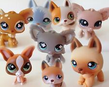 LPS LITTLEST PET SHOP DOGS:  CHIHUAHUAS & GERMAN SHEPHERDS. COMBINED WORLD POST