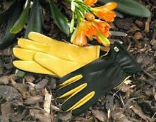 Gold Leaf 'Dry Touch' leather gardening gloves - 2 FREE PACKETS OF SEEDS