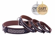 Genuine Leather Dog Collar Studded FREE PERSONALIZED ID TAG Brown Puppy Breeds